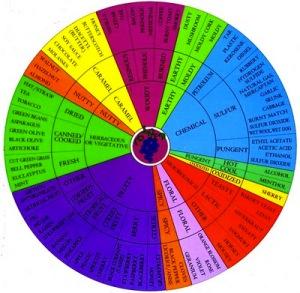 A Wine Aroma Wheel (DREW LAMBERT)