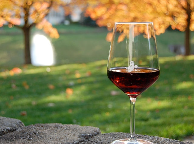 Cheers to National Drink Wine Day!